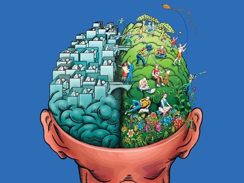 Cerebro y esquizofrenia
